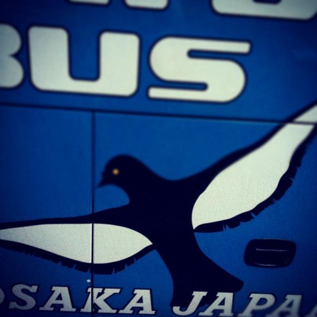 鳥取砂丘!